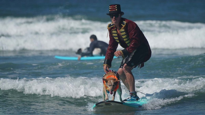 Homer Henard rides with Skyler, a red heeler in the freestyle heat of the Surf Dog Surf-a-thon in Del Mar. Photo by Chris Stone